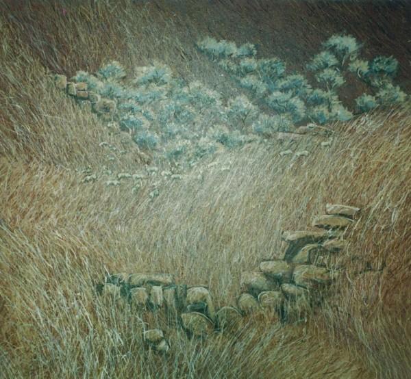 Highland Flock